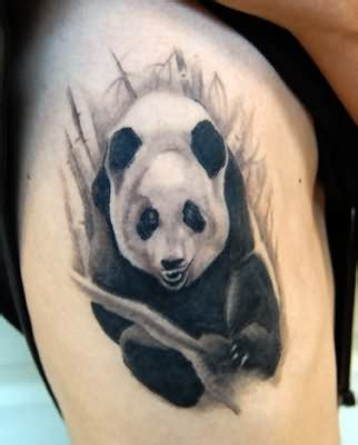 Panda Tattoos Designs, Ideas and Meaning   Tattoos For You