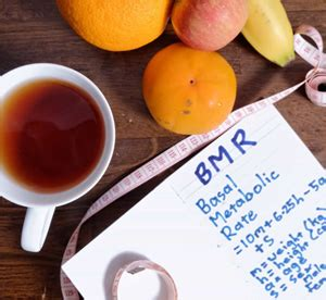 Free Calculate Basal Metabolic Rate   BMR Online Calculator