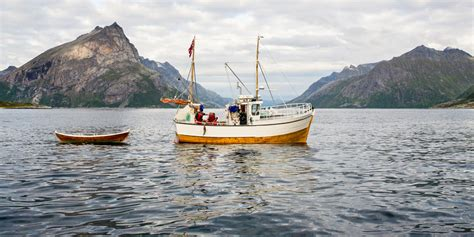 Fjord and sea fishing   Catch a fish all year round