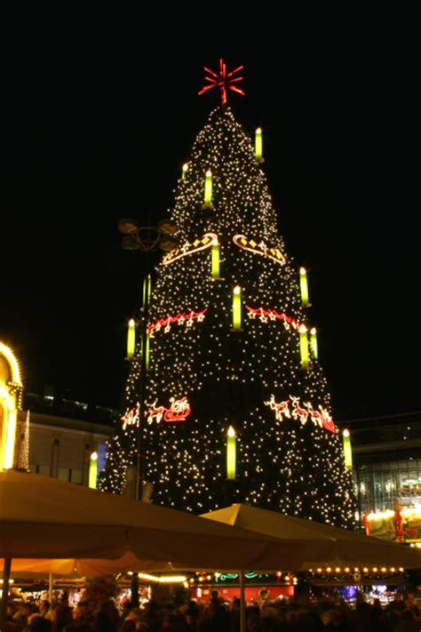 Worlds Tallest Christmas Trees for 2014