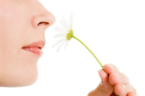 The Dangers of Scented Products and How They Can Affect