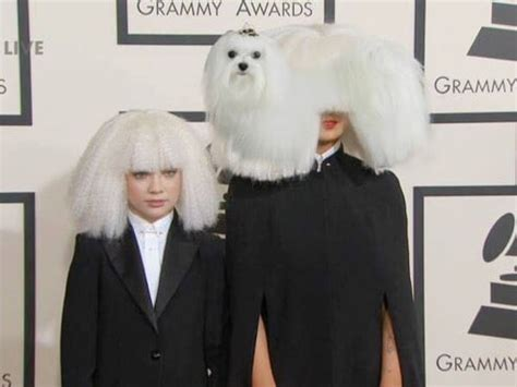 Was Sia wearing a wig?   The Funniest Memes From 2015