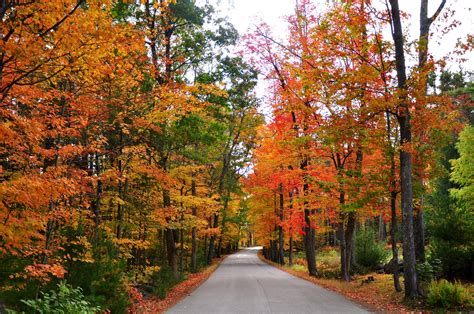 The best scenic drives for fall near NYC